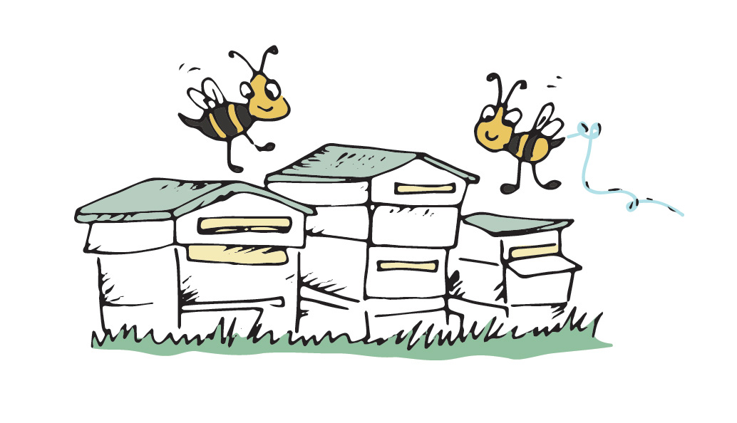 Curly's-Legacy_Beehives - Juli Dosad Illustrator